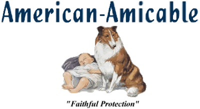 American Amicable Life Insurance Company Of Texas Your Insurance Group